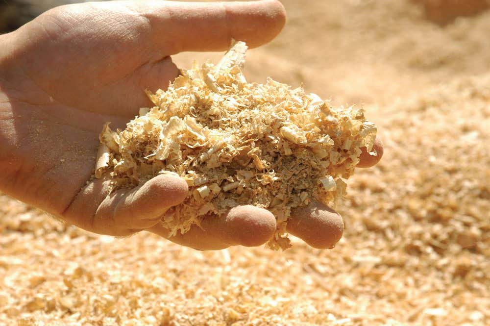 Converting wood waste into renewable energy